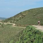cyprus-4-day-challenge-day-3-half-marathon-2012-ii