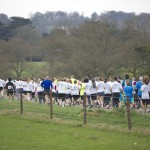highclere-run-2013-crowd-shot