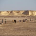 desert-runners-line-of-runners