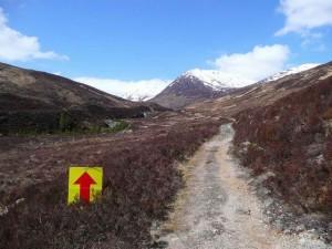 Annual Telluride Mountain Run